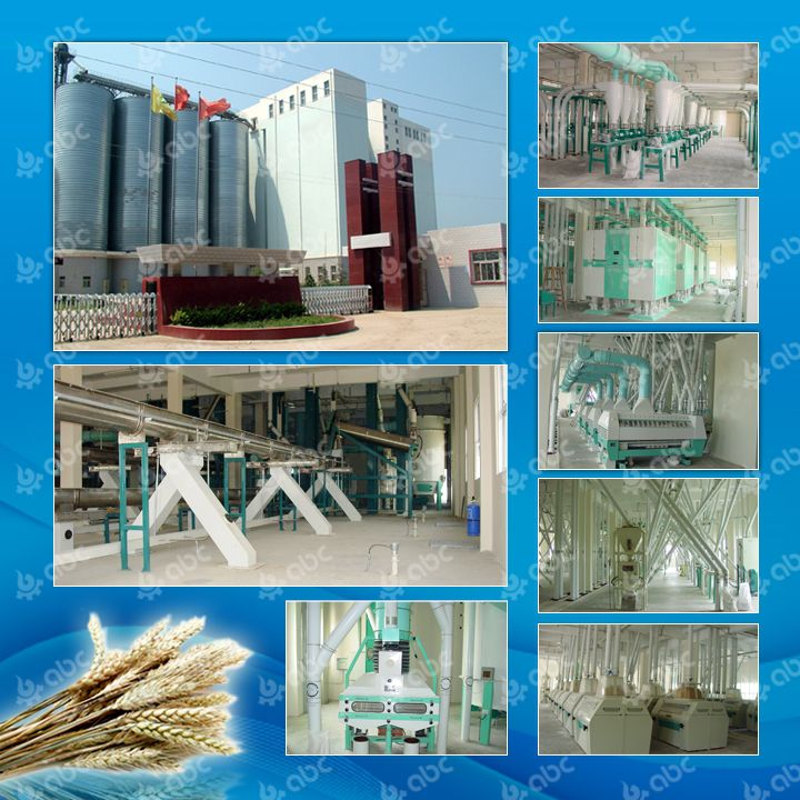500tpd wheat flour plant