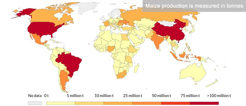 Maize Production Countries
